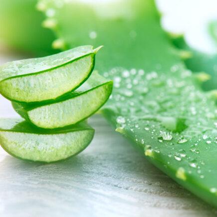 Quels sont les avantages de la pulpe d'Aloe Vera dans un régime amincissant